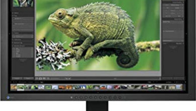 Photo of 24″ EIZO CG241W