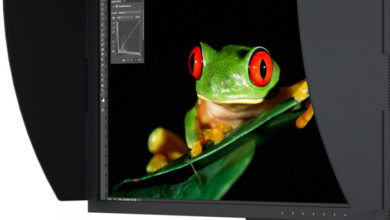 Photo of 24″ EIZO ColorEdge CG2420