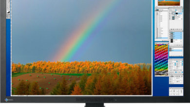 Photo of 30″ EIZO ColorEdge CG301W
