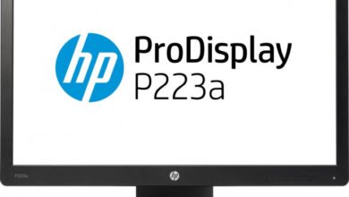 Photo of 22″ HP ProDisplay P223a