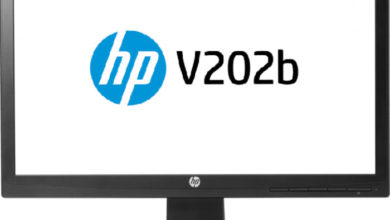 Photo of 20″ HP V202b