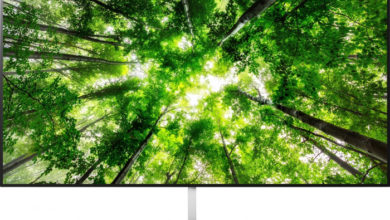 Photo of 65″ LG OLED65W8PUA
